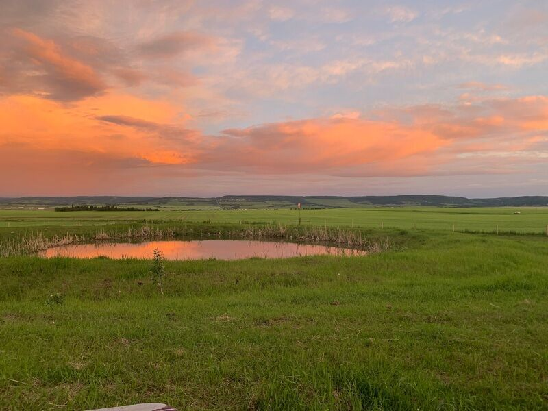 4 Things to You Should Know Before Buying a Rural Property in Dawson Creek,