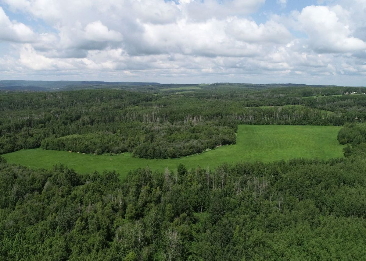 landscape-noperson-nature-wood