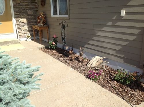 house-flower-noperson-yard