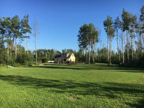 grass-tree-noperson-landscape