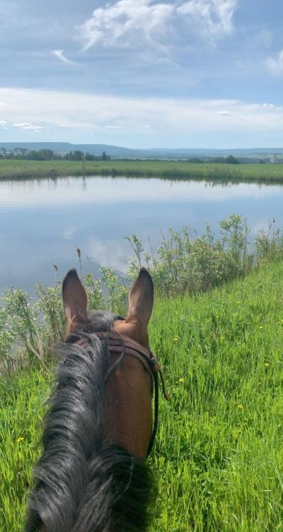 view of lagoon from horseback